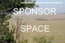 sponsor place WCW