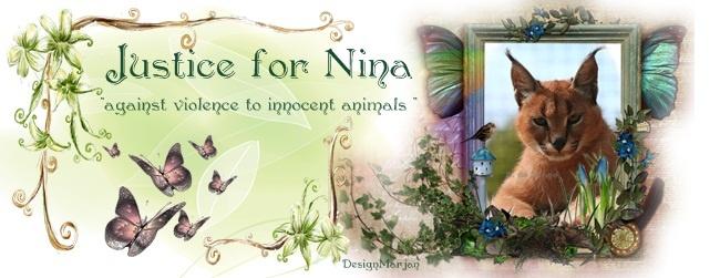 Nina 6