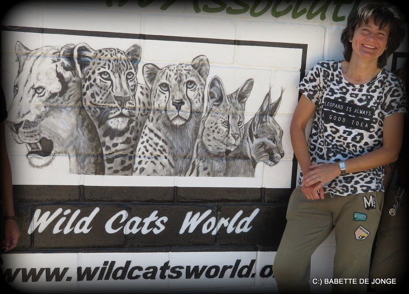 """Babette de Jonge"" - Wild Cats World"