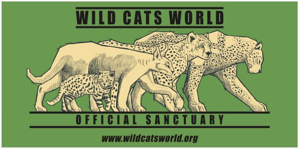 Wild Cats World - Official Sanctuary